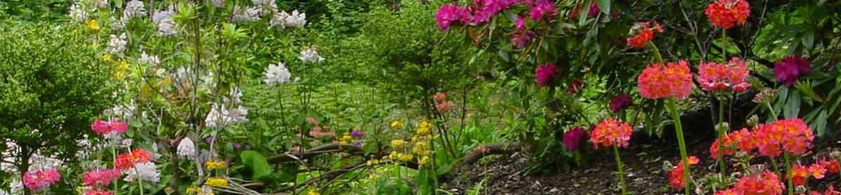 Gartengestaltung Frank Herr
